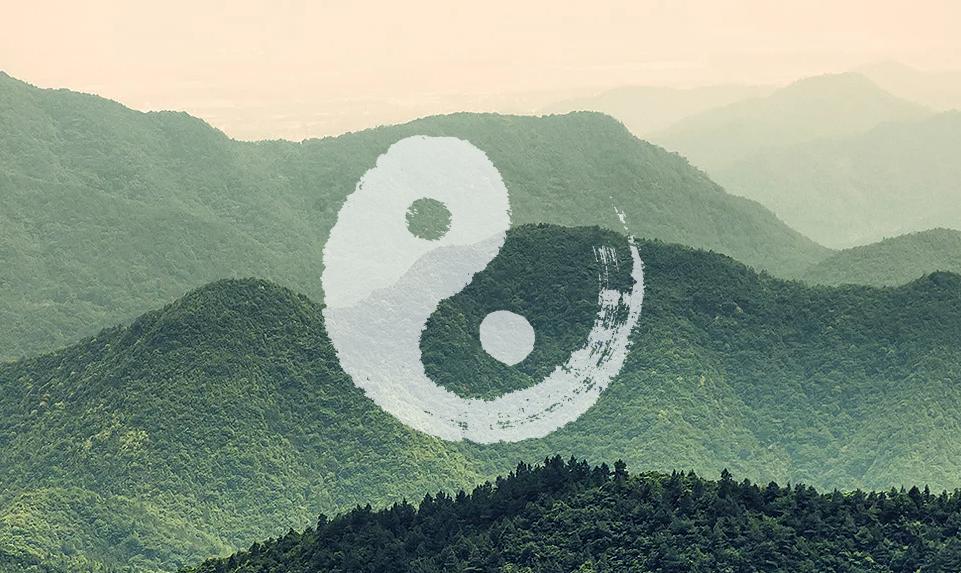 5-Elemente Organ Yoga | Basic | Nov 2021