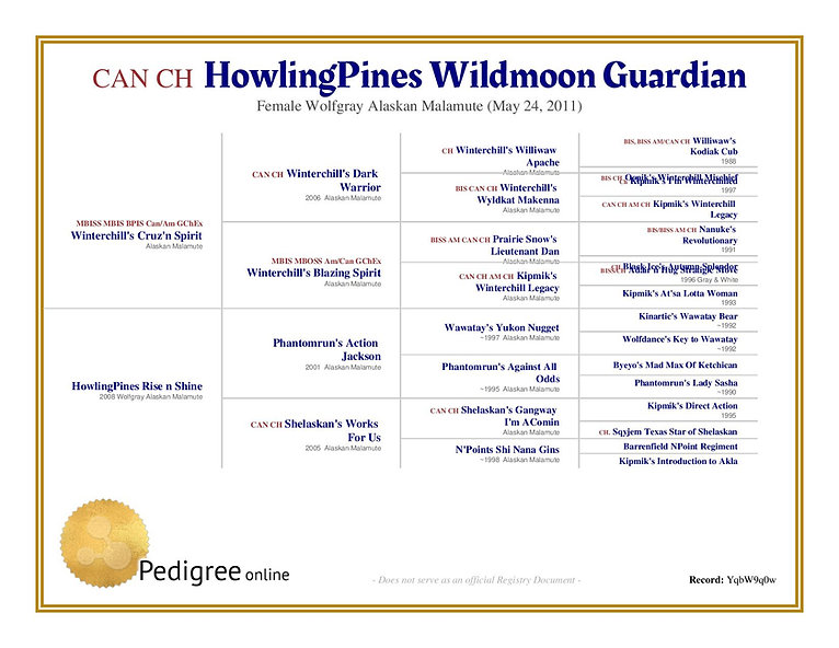 Artemisped-howlingpines-wildmoon-guardia