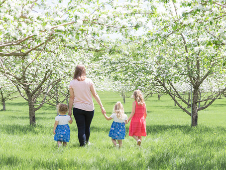 {A Mother & her Daughters} Spring Apple Blossom Session at Glacial Ridge Winery