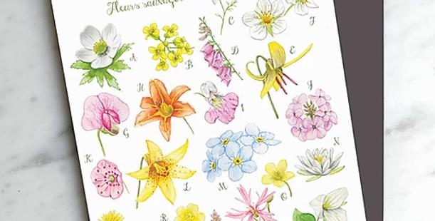 HOBEIKA ART - Carte ABC Fleurs sauvages du Québec