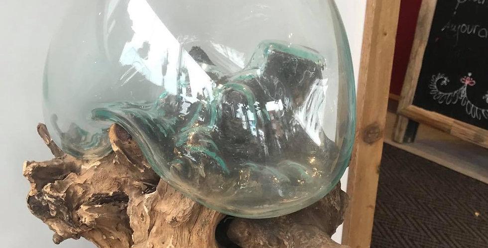 Terrarium en verre sur souche de bois