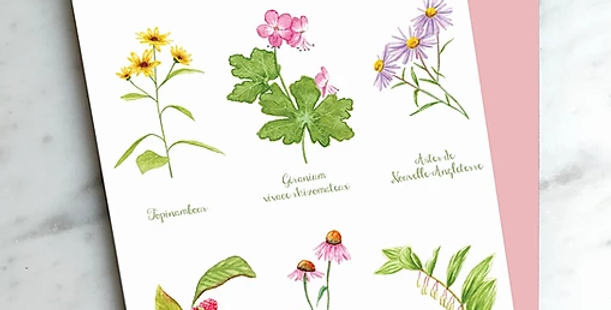 HOBEIKA ART - Carte Fleurs de ruelle