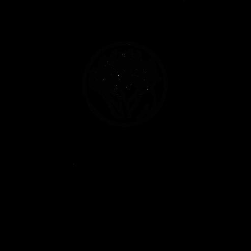 Logo-déclinaison-typo.png
