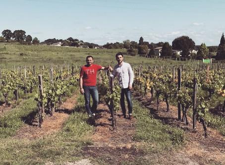 La vigne, une histoire de famille