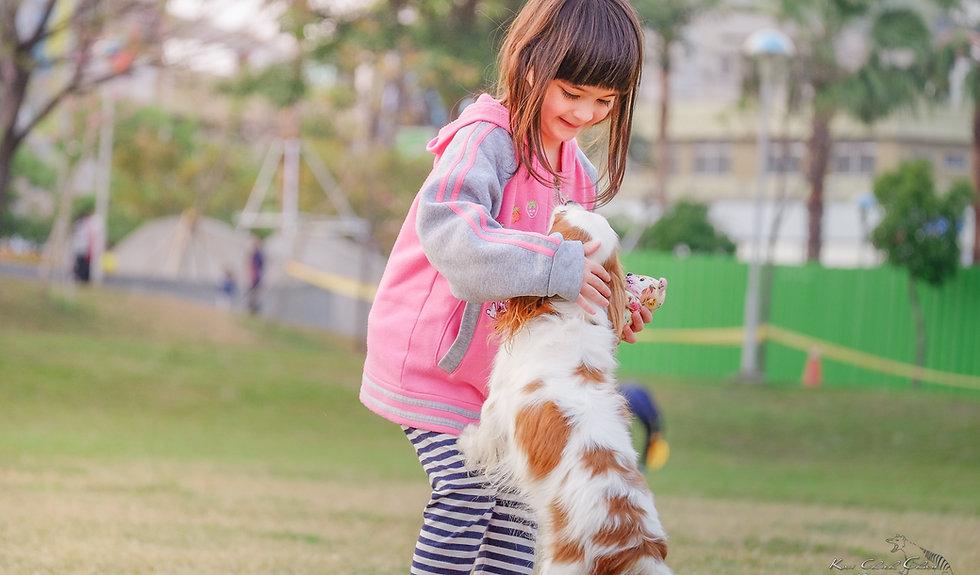 animal-child-contact-332974_edited.jpg
