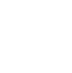 team certified logo