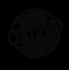 team certifed logo