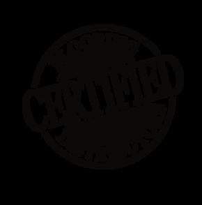 team certified logo