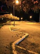 pizap.com15315751582761.jpg