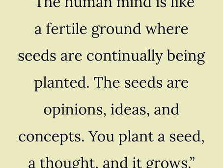 The human mind is a fertile ground, sow the right seeds and they will grow.