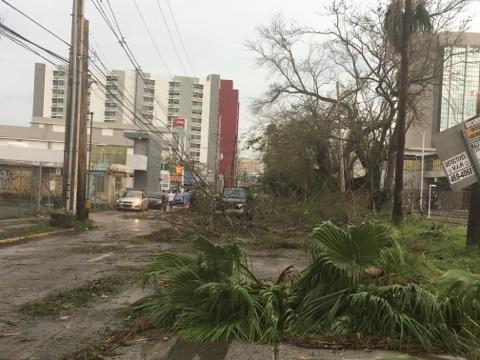 Post-storm debris
