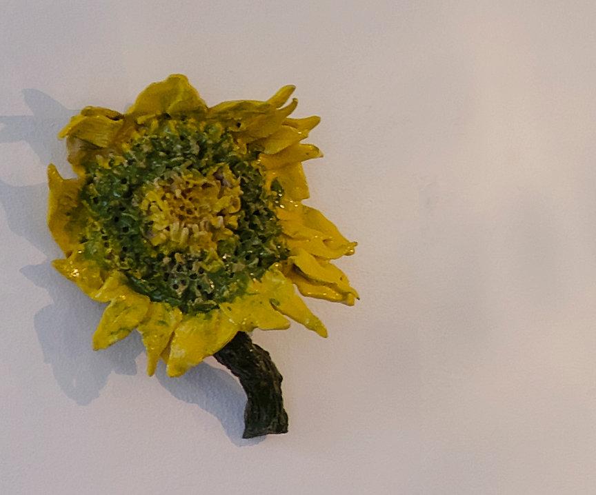 sunflower4188.jpg