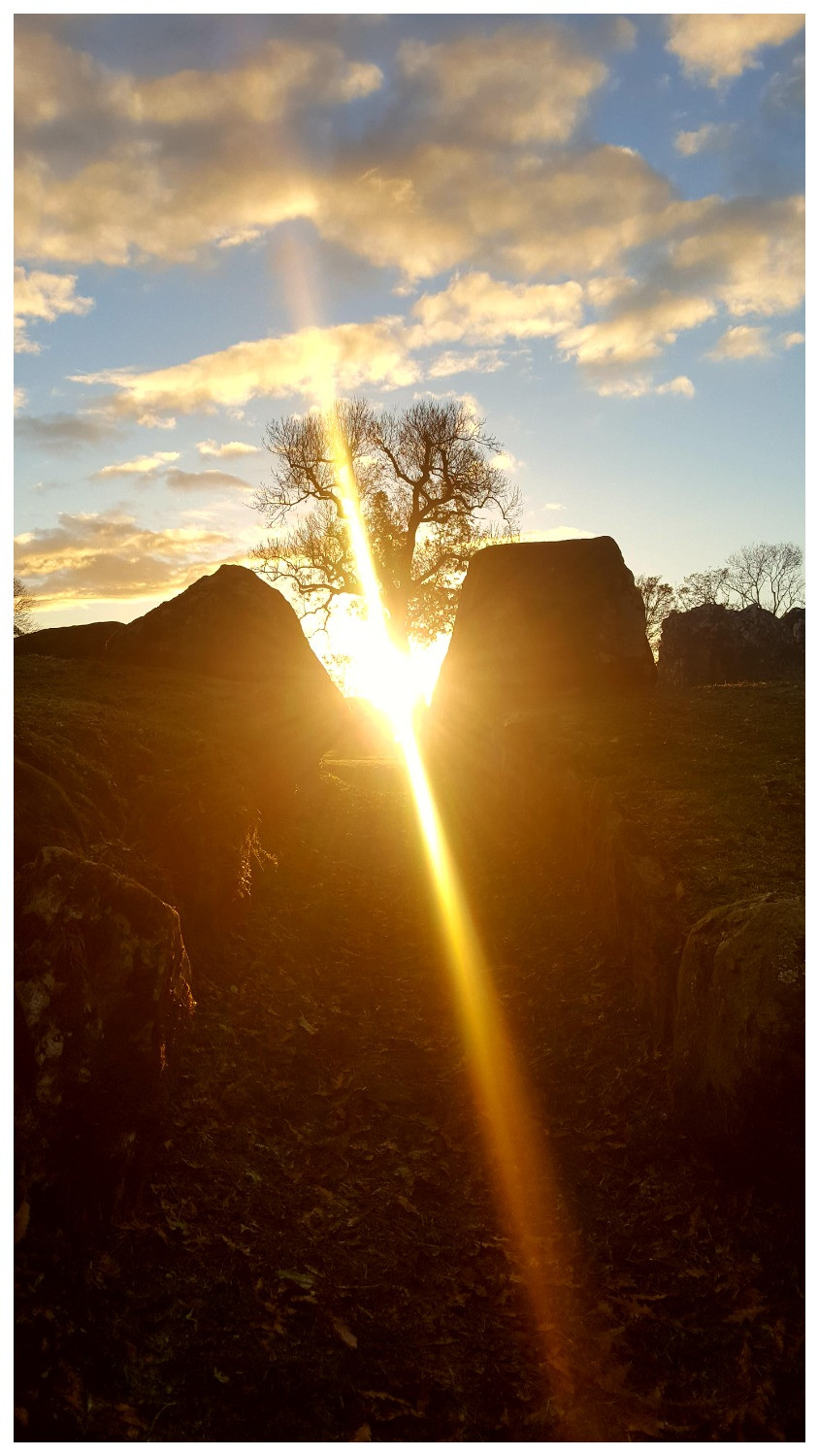 A magnificent photograph taken recently by Kathy Tiernan, Artist, at Grange Stone Circle