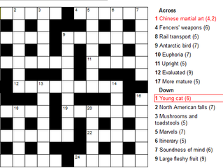Solve this Jumbo Crossword Puzzle!