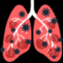 lungs_corona.png