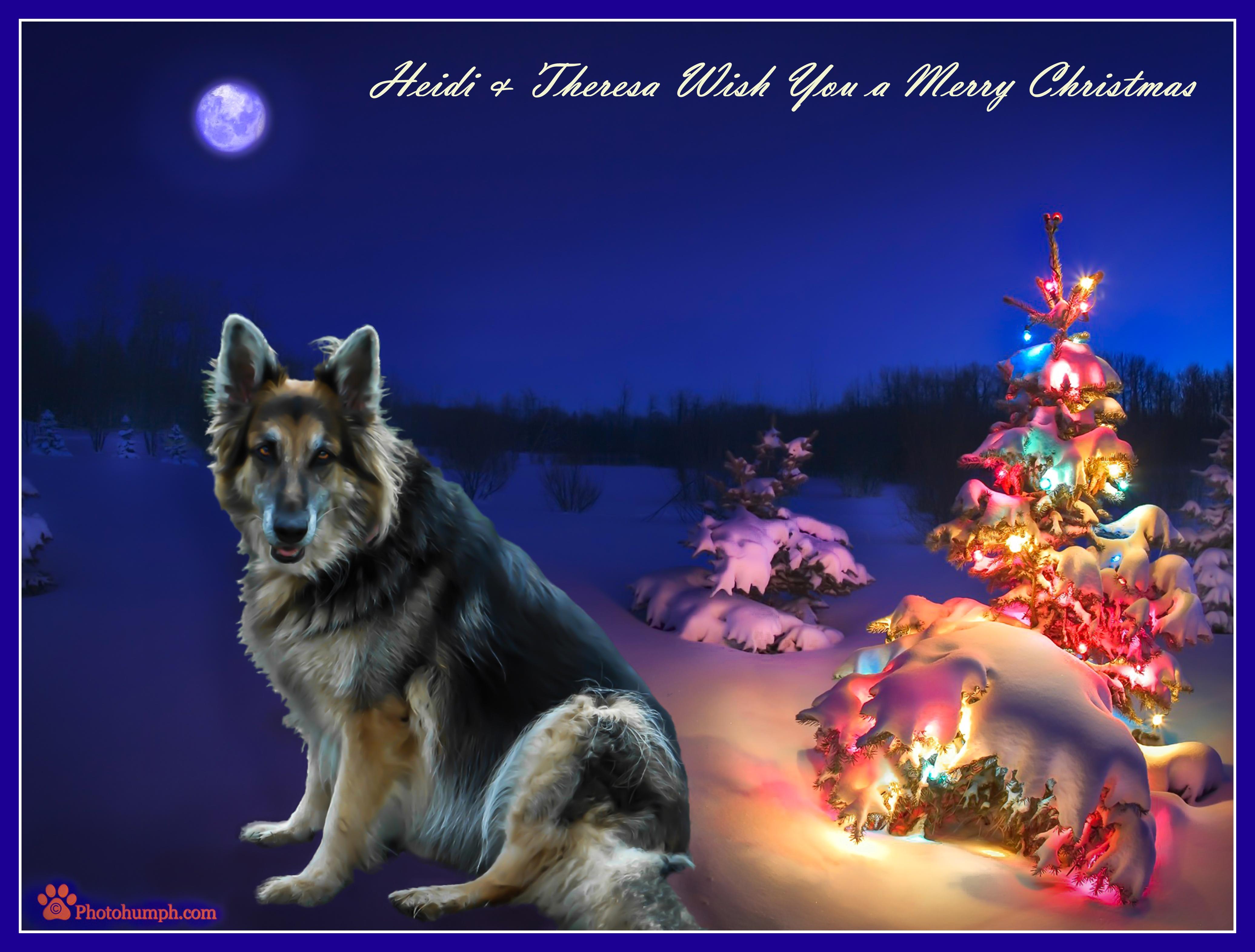 Heidi Christmas Card.jpg