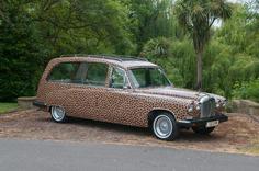 Lepoard hearse
