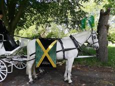 White horse Jamaican flag.jpg