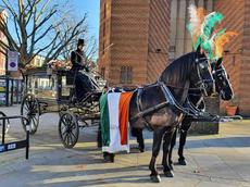 Black horse Irish drapes