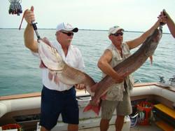 2 big fish 2