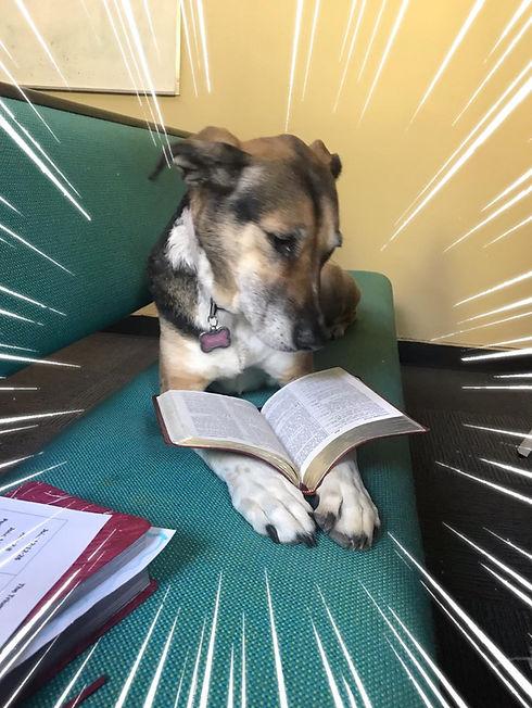 Nina Bible.jpg