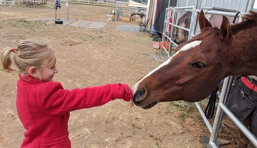 Kid Horse.jpg