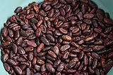 cacao roasted full beans.jpg