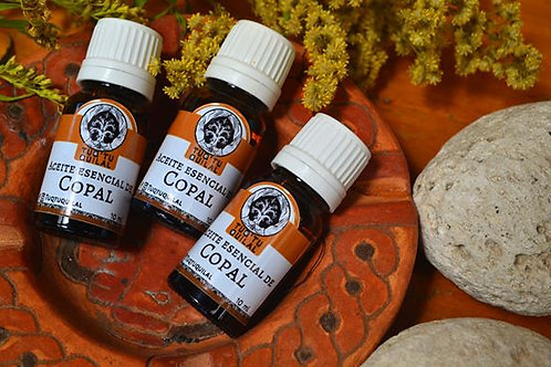 Box of 10 - Copal essential oil - 10ml