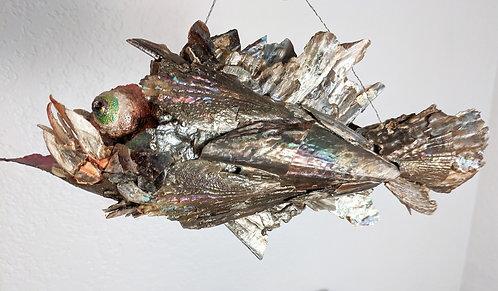 Shellfish Fish