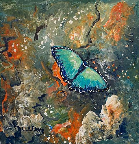 The Beauty of Butterflies 2