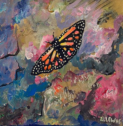 The Beauty of Butterflies 3