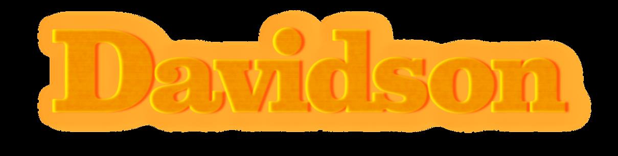 Davidson_Logotype_orange_effekt.png