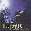 Haunted FX copy.jpg