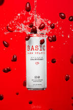 Basic Cranberry Splash Photos-057-Edit-E