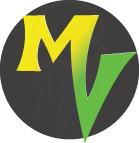 My Vitalocity Browser Icon - 2011