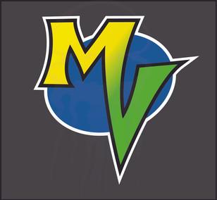 My Vitalocity Logo - 2011