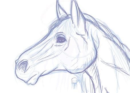 Horse Sketch - 2016