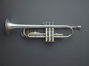 Directly above shot of trumpet against g