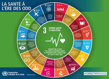 La_santé_durable_selon_l'OMS.jpg