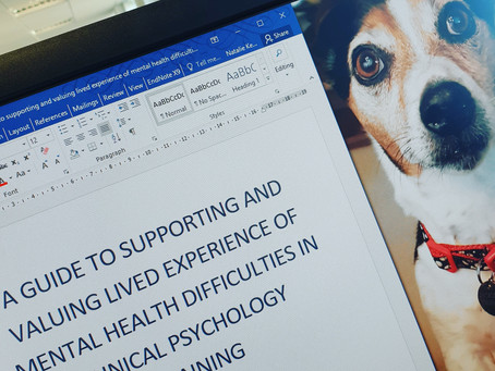 Supporting and Valuing Lived Experience of Mental Health Difficulties in Clinical Psychology