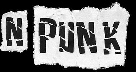 NPUNK.png