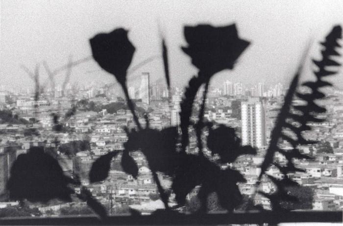 Ver(a)cidade, 2008