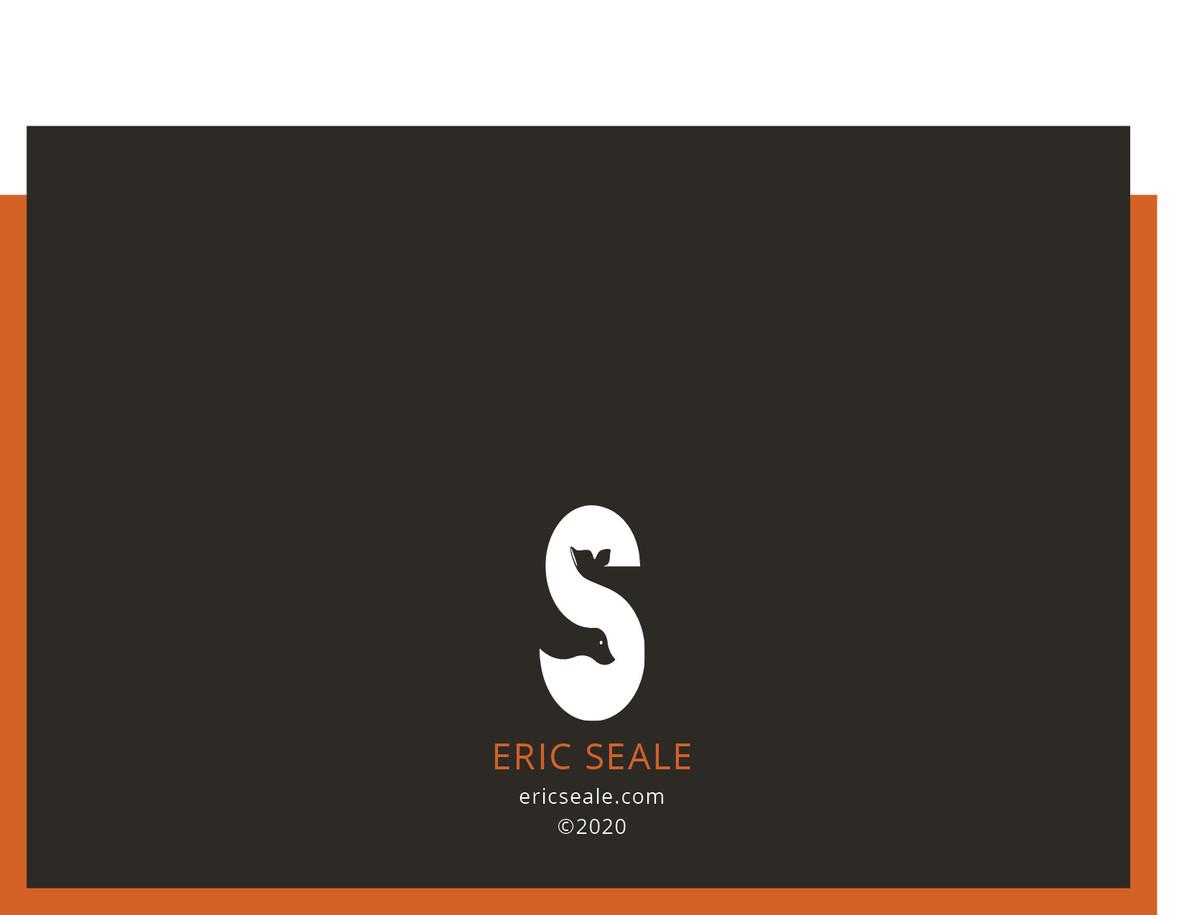 ES_Portfolio 202020.jpg