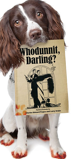 Web Whodunnit.jpg