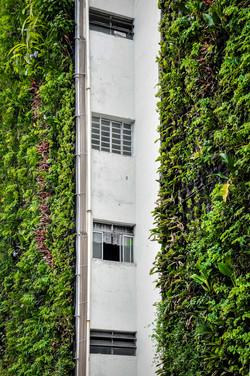 Urbanas Foto Alexandre Dutra