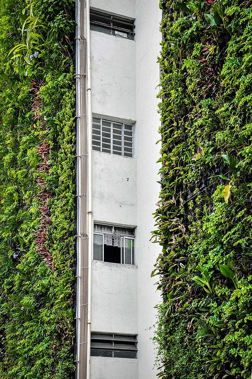 São Paulo Jardim Vertical