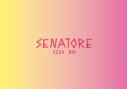 Logo_Senatore_