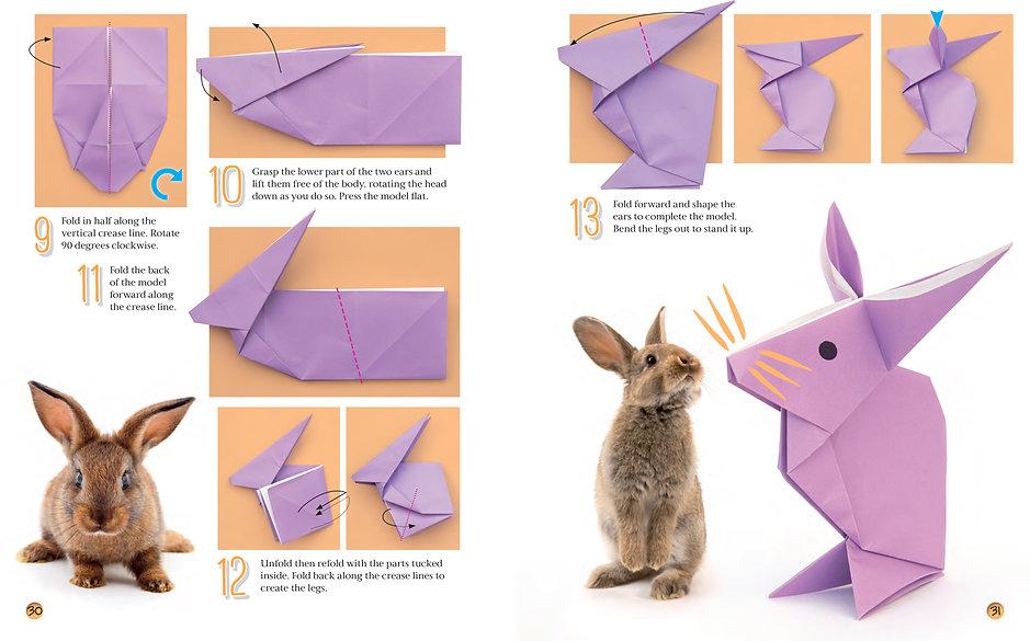 Rabbit 2.jpg