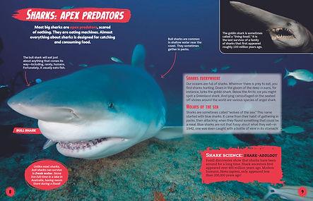 Shark-spread1.jpg