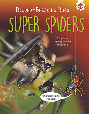 RecordBugs_Spiders_CVR.jpg